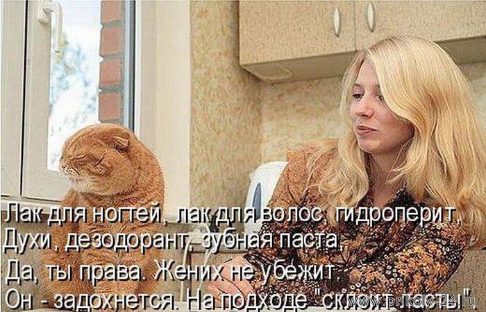 http://www.prikoly-24.ru/uploads/posts/2013-07/1374126482_kotomatricy_12-36.jpg