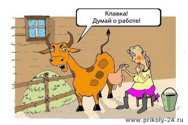 Анекдоты дня. Выпуск №39